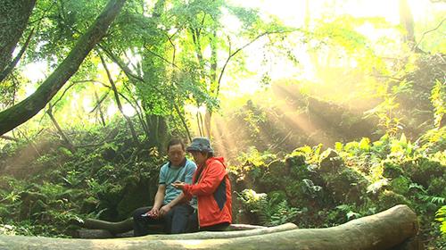 인간극장 (1TV, 6월20일~24일) 곶자왈, 아버지의 숲을 걷다