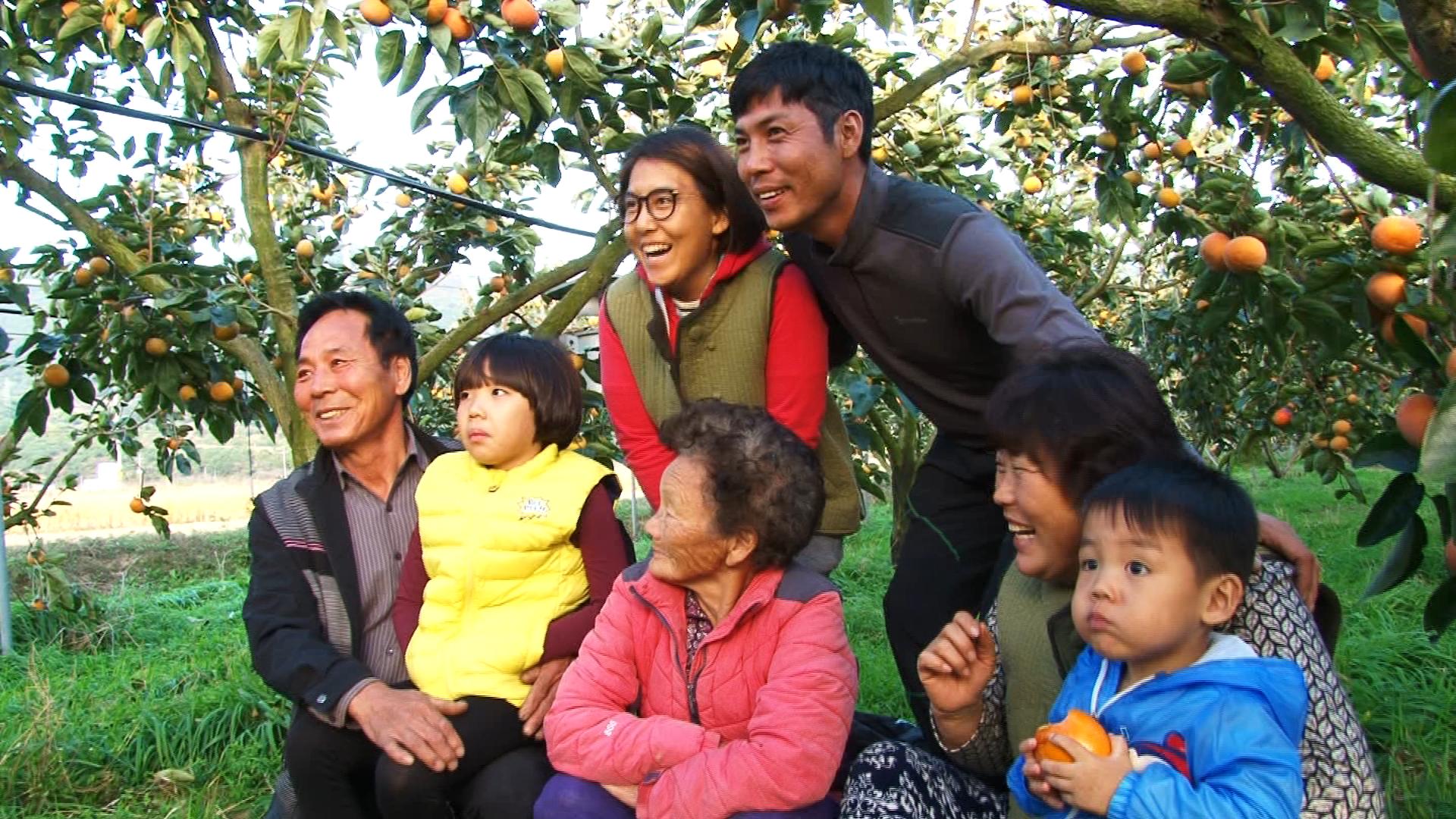 인간극장 (1TV, 11월27일~12월1일) 감나무집 며느리들